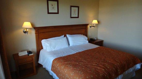 Terrazas del Calafate Hotel: Habitacion