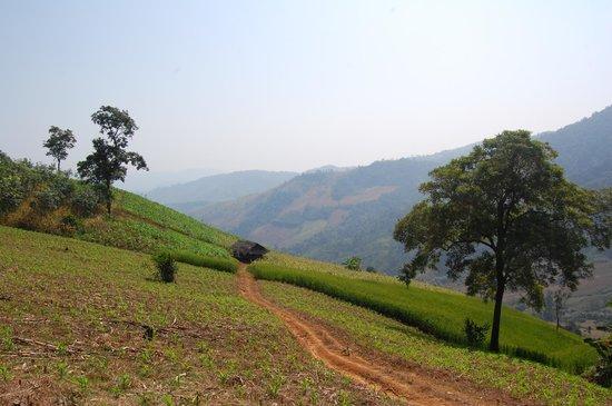 Lanjia Lodge : The views