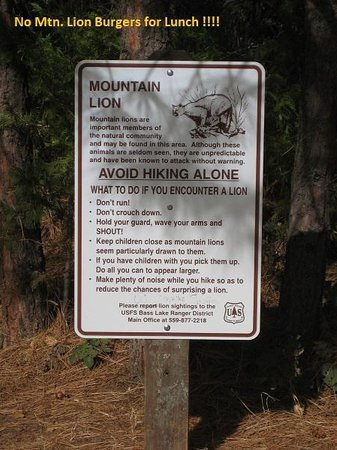 Tenaya Lodge at Yosemite: Sign just near Lewis Creek trail. No lions.