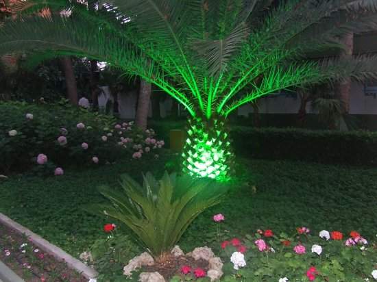 Botanik Hotel & Resort: nature