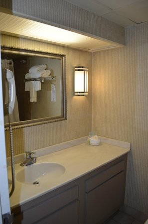 Holiday Inn Carteret - Rahway: Санузел