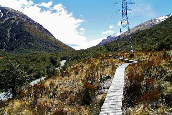 Mountain House YHA: tracks