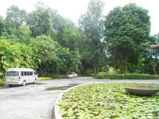 Supalai Resort & Spa Phuket: lobby