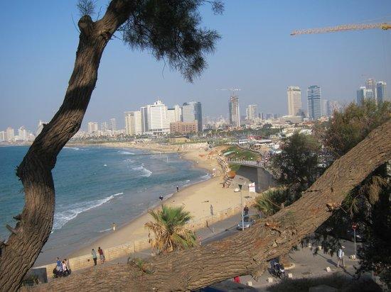 Dan Panorama Tel Aviv : Tel Aviv from the Old City of Jaffa