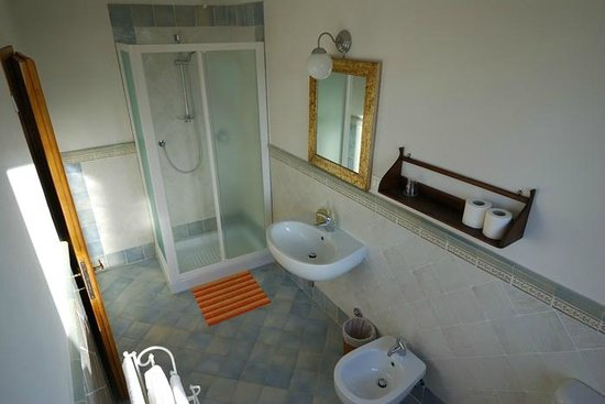 Podere Scaluccia : Bathroom shower