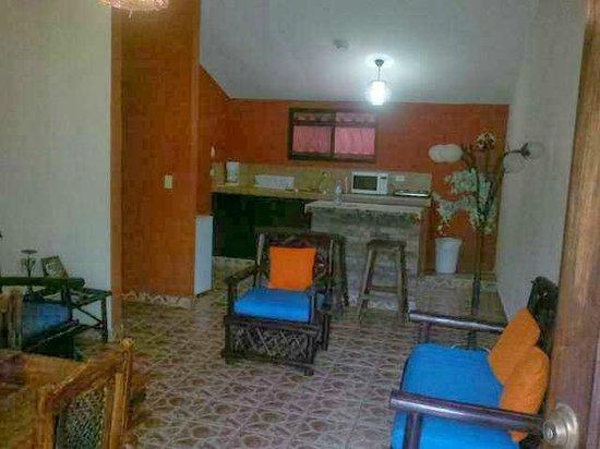 Stone Cabins Boquete : sala/comedor y cocina