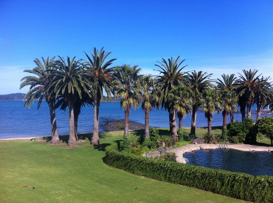 Copthorne Hotel & Resort Bay of Islands: View from our room