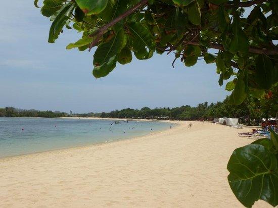 Nusa Dua Beach Hotel & Spa: Strand