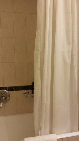 Hotel Dei Mellini: Rideau de douche
