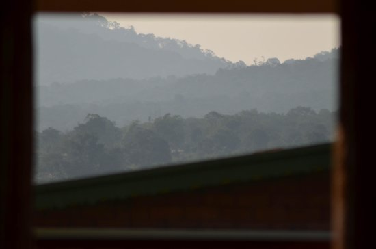 Wild Woods Haven : View from the resort