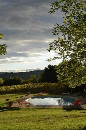 Agriturismo Fattoria Santa Vittoria: Wonderful view