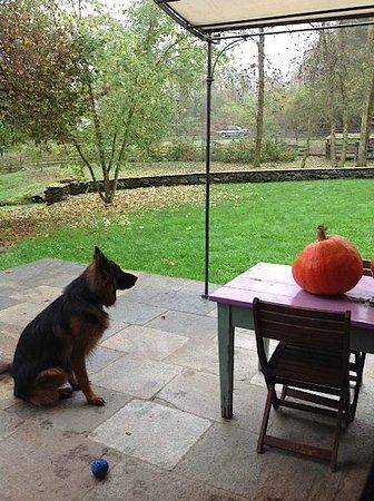 B&B Melizio: the orange ball looks good!