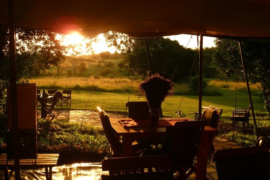 Kicheche Mara Camp: View from the main lounge