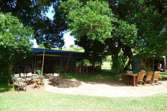 Kicheche Mara Camp: Main camp reception / dining area