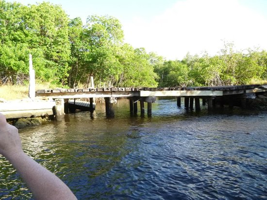 Everglades City Airboat Tours: Old Railroad Bridge