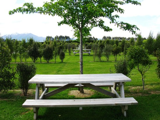 Manapouri Motorhome & Caravan Park: Alfresco dinning options abound