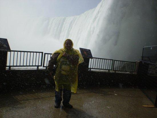 Niagara Falls: herradura vista desde abajo