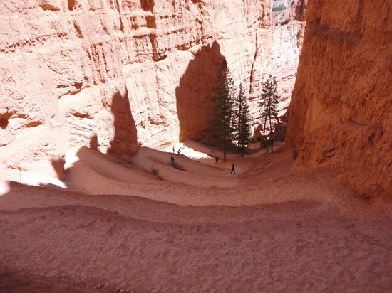 Under-the-Rim Trail
