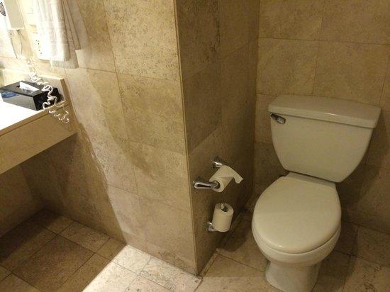 NH Collection Mexico City Reforma: Bathroom
