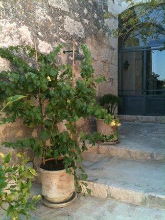 Tenuta Cammarana : corner of the courtyard
