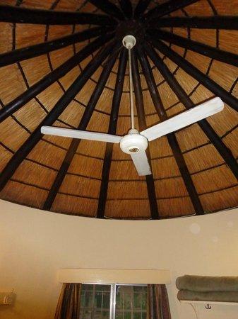 Pretoriuskop Restcamp: Air conditionné.