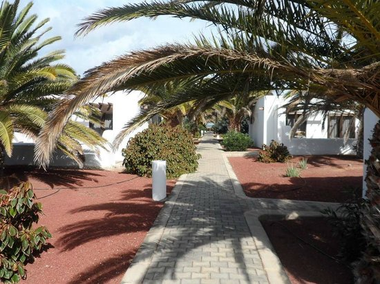 Hotel HL Río Playa Blanca: paths leading to bungalows