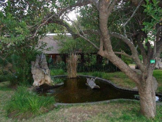 Mopani Rest Camp: Jardin privatif.