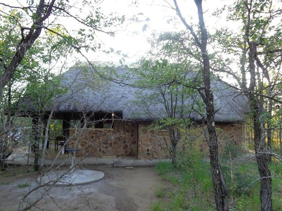 Mopani Rest Camp: Jardin privatif.