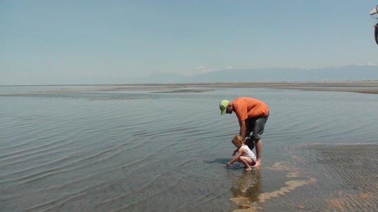 Great Salt Lake : non supera i 5 m di profondità
