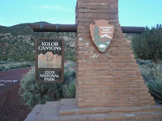 Taylor Creek: Kolob Canyons, Zion National Park, UT