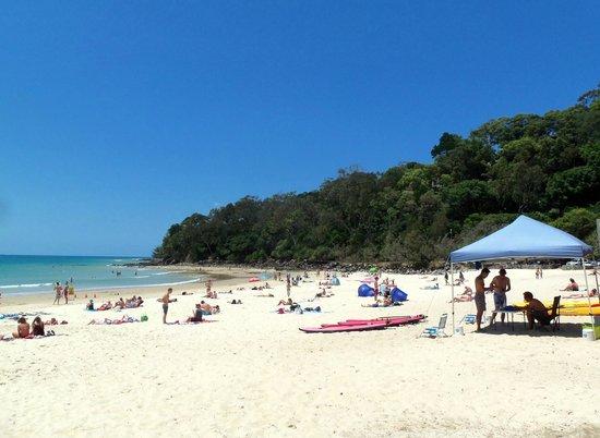 Noosa Main Beach: Beach
