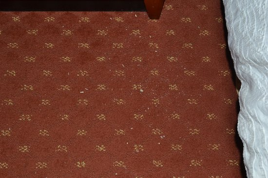Hilton Garden Inn Roanoke Rapids: Are those toe nails there?