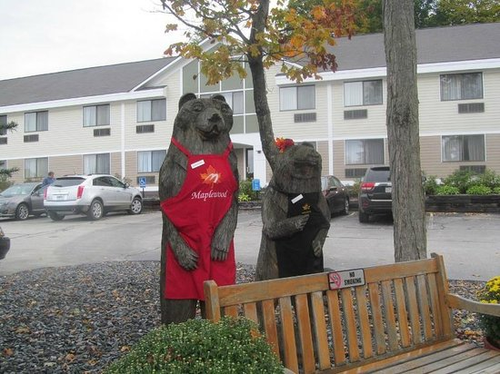 Comfort Inn at Maplewood: Bears outside