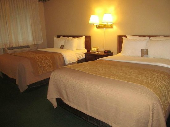 Comfort Inn at Maplewood: beds