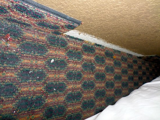 Holiday Inn Express Grand Canyon: Floor behind the bed