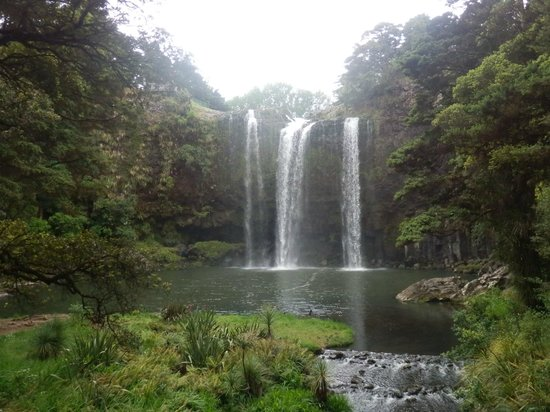 Whangarei Falls: From base of falls