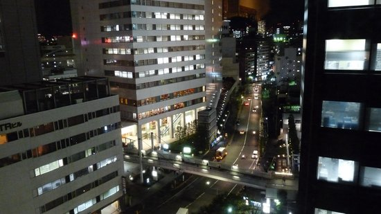 Hotel Sunroute Plaza Shinjuku: Room 1229, night view