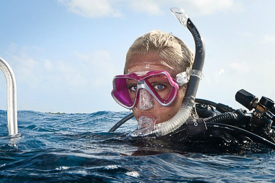 Eco Dive: We run local, interstate and overseas dive trips