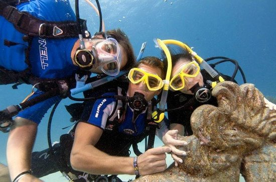Eco Dive: Diving can be fun and exciting