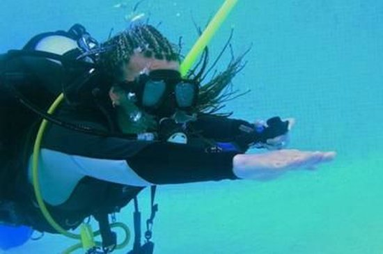 Eco Dive: Learn to dive on the Gold Coast