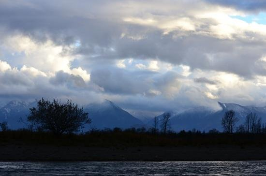 Fraser River Safari: and the view...