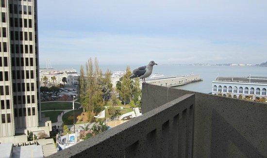Hyatt Regency San Francisco: view from our balcony