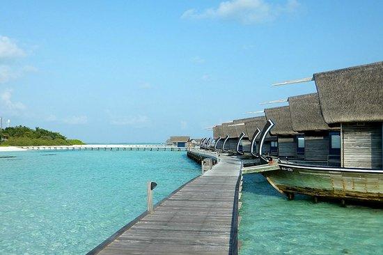 COMO Cocoa Island: Dhoni - front view
