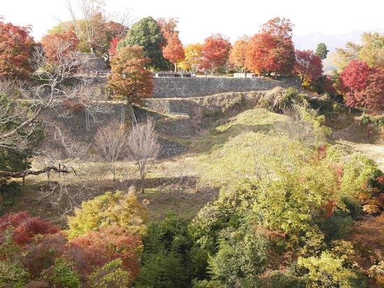 Ruins of Oka Castle: 城内から