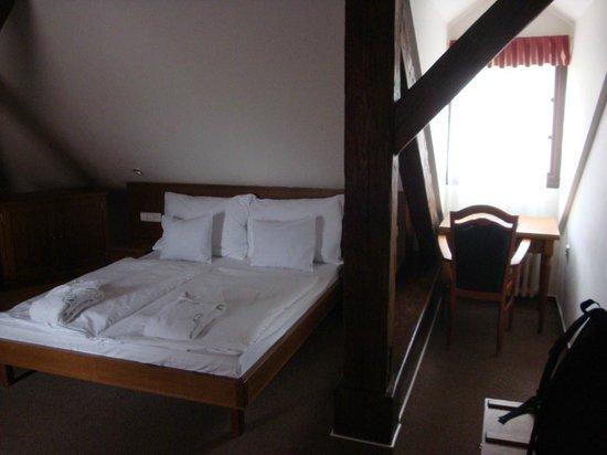 Hotel Dvorak: Room