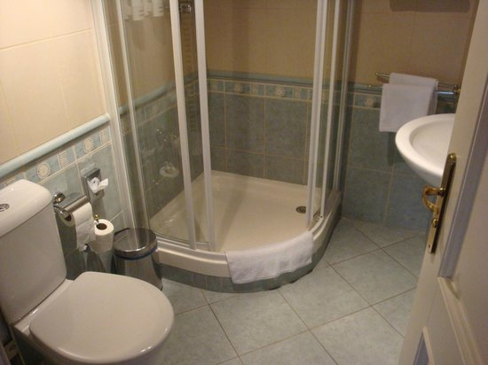 Hotel Dvorak: Bathroom