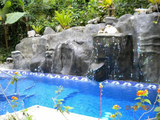 Cashew Hill Jungle Cottages: The pool at Cashew Hill