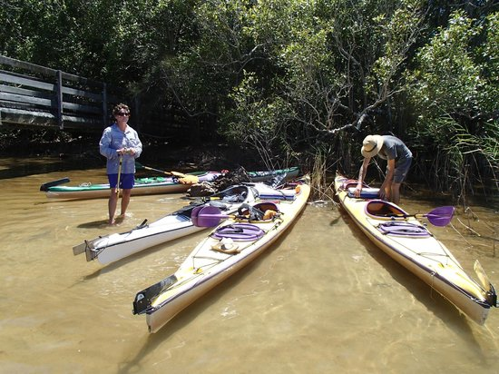 Kanu Kapers Australia Noosa Everglades Kayak Day Tours: Our Amazing Tour Guide Viv