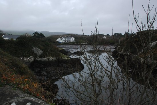 The Heron's Cove: Heron's Cove from the harbour