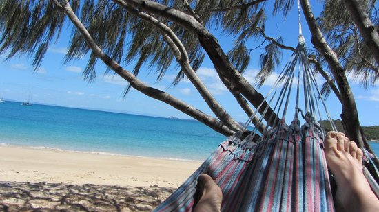 Svendsens Beach: Me enjoying the beautiful peaceful beach - just me and a hammock